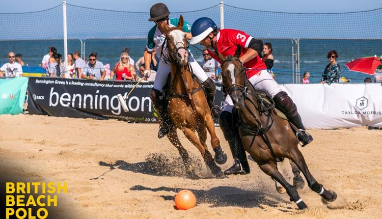 British Beach Polo Championship Sandbanks - Local Event